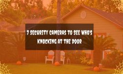 7 Security Cameras to See Who's Knocking at the Door