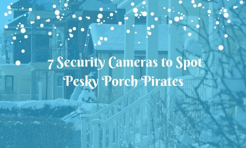 7 Security Cameras to Spot Pesky Porch Pirates
