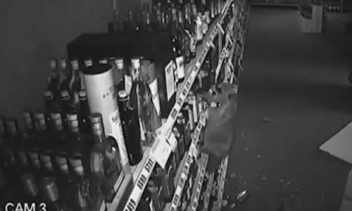 Top 9 Surveillance Videos of the Week: Raccoon Ransacks Liquor Store