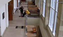 Top 9 Surveillance Videos of the Week: Handcuffed Man Flees Court, Jumps Off Balcony