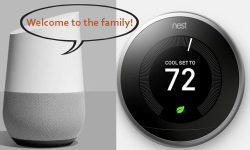 Read: Nest CEO Steps Down as Company Folds Into Google's Home Division