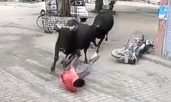 Top 9 Surveillance Videos of the Week: Man Trampled by Fighting Bulls