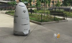 New Yorkers Wary of Patrolling Security Robots