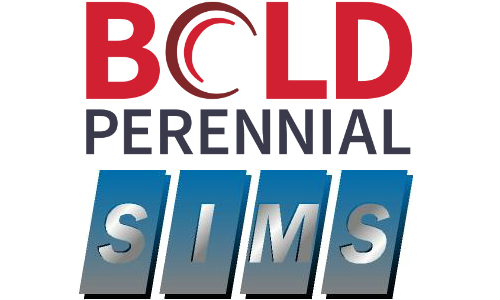 Bold Perennial Acquires Security Information & Management Systems