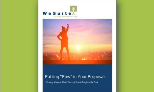 Systems Integrators Guide Offers Tips for Creating Winning Sales Proposals