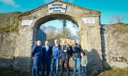 Read: Anixter Teams With Partners to Secure Bird of Prey Sanctuary in Ireland