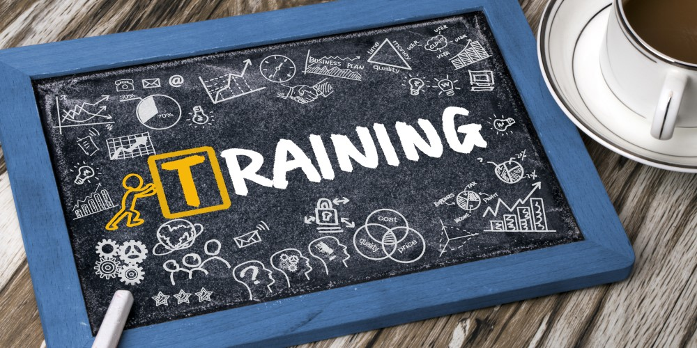 Big Idea of the Month: You Can Never Invest Too Much in Training