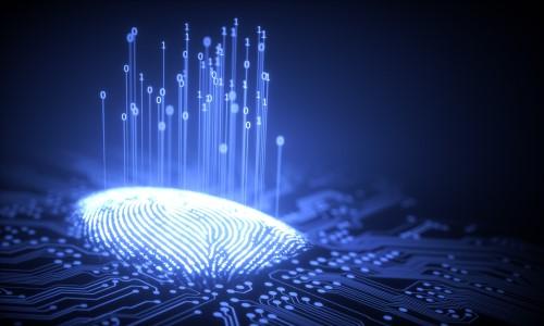 Biometrics Expert Anne Wang Talks Digital Infrastructure, Emerging Tech