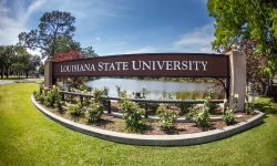 LSU Refutes Stalker Victim's Claims of Faulty Security Cameras