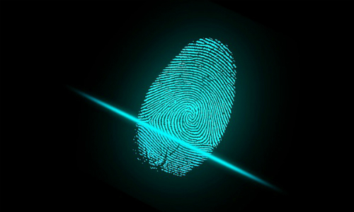 Top 4 Identity Protection Predictions for 2020