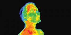 Read: Why Thermal Imaging Trends Are Looking Up