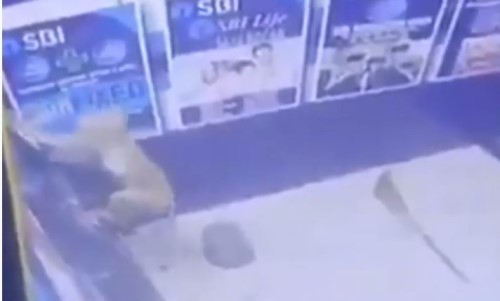 Top 5 Surveillance Videos of the Week: Monkey Tears Open ATM
