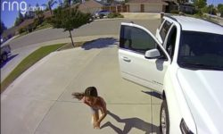 Top 5 Surveillance Videos of the Week: Brave 10-Year-Old Foils Attempted Burglary