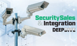2020 Video Surveillance Deep Dive: Prices, Profits, Challenges & More