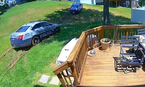 Top 5 Surveillance Videos of the Week: Police Chase Ends Up in Resident's Backyard