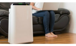 Big Majority of Americans Fancy IAQ Purifiers for Holidays