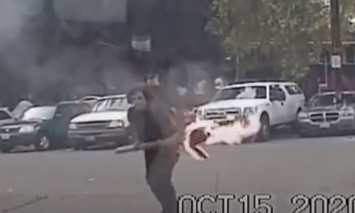 Top 9 Surveillance Videos of the Week: Man Throws Burning Torch Into Police Car With Cop Inside