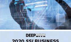 2020 SSI Business Software Deep Dive