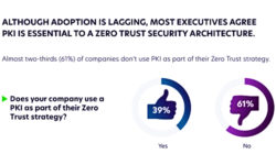 Read: Increased Adoption of PKI Essential to Achieve Zero Trust Strategy: IT Security Survey