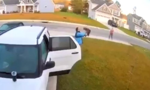 Top 9 Surveillance Videos of the Week: Rabid Bobcat Attacks Couple, Gets Tossed