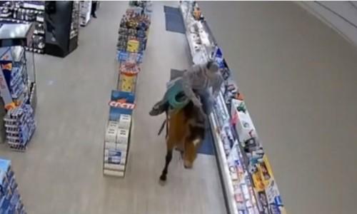 Top 9 Surveillance Videos of the Week: Man Rides Horse Around Convenience Store