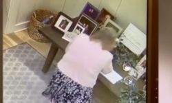 Top 9 Surveillance Videos of the Week: Wedding Crasher Steals Gifts From Multiple Receptions