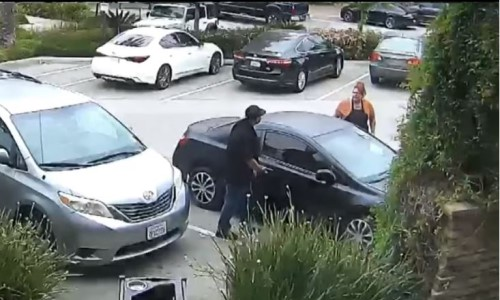 Top 6 Surveillance Videos of the Week: Woman Fights Off Suspected Car Thief