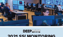 Exclusive Research: SSI 2021 Monitoring Deep Dive